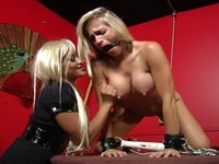 Cute blonde big natural boobs maxine x subjected to bdsm toying